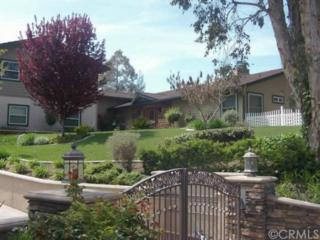 29290  Via Norte  , Temecula, CA 92591 (#SW14205328) :: Allison James Estates and Homes