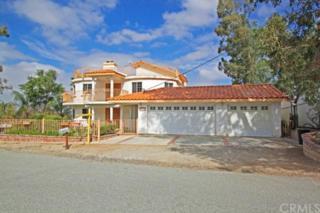 27731  Vista Del Valle  , Hemet, CA 92544 (#CV14223066) :: Mainstreet Realtors®