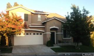 42166  Chestnut Drive  , Temecula, CA 92591 (#SW14226775) :: Pacific Lifestyles Realty