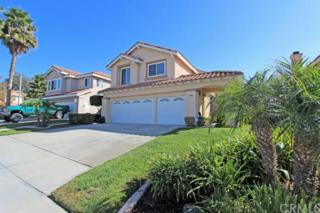 43310  Calle Nacido  , Temecula, CA 92592 (#PW14231530) :: Pacific Lifestyles Realty