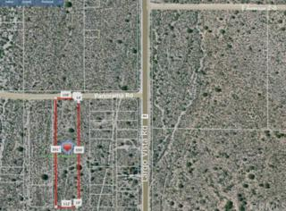 20500  Panorama Road  , Llano, CA 93544 (#DW14231627) :: Allison James Estates and Homes