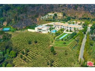 9505  Lania Lane  , Beverly Hills, CA 90210 (#14809081) :: Allison James Estates and Homes