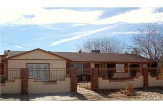 9820 E Avenue Q4  , Palmdale, CA 93591 (#DW14247790) :: Allison James Estates and Homes