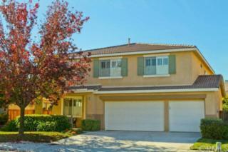 509  Memphis Court  , Hemet, CA 92545 (#SW14249635) :: Allison James Estates and Homes