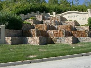 19  Via Del Macci Court  , Lake Elsinore, CA 92532 (#SW14249677) :: Allison James Estates and Homes