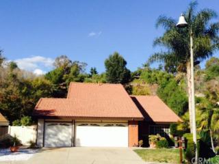31021  Via Solana  , San Juan Capistrano, CA 92675 (#OC14259097) :: Doherty Real Estate Group