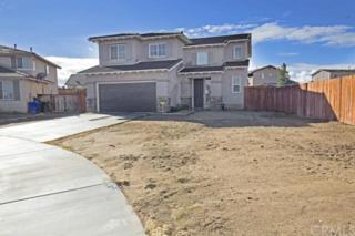 14348  Brittlebush Drive  , Adelanto, CA 92301 (#CV14259921) :: Mainstreet Realtors®