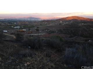 0  0  , Perris, CA 92570 (#CV14260149) :: Allison James Estates and Homes