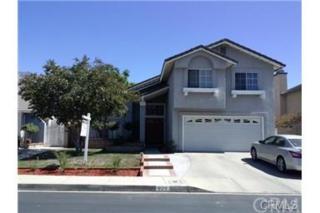 925  Falcon View Street  , Upland, CA 91784 (#CV14260967) :: Mainstreet Realtors®