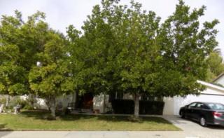 17811  Orna Drive  , Granada Hills, CA 91344 (#SR14261398) :: Realty ONE Group Empire