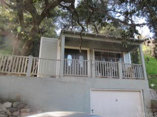 12047  Kagel Canyon Road  , Sylmar, CA 91342 (#BB15010718) :: The Brad Korb Real Estate Group