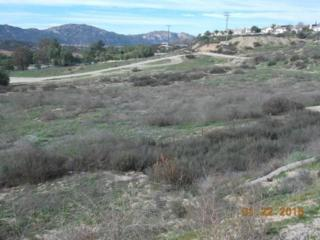 0  Sleepy Hollow  , Temecula, CA  (#SW15018506) :: The Brad Korb Real Estate Group