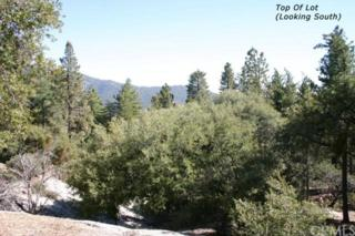 0  Walters Drive  , Idyllwild, CA 39437 (#SW15021516) :: Allison James Estates and Homes