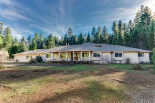 6350  Rambling Way  , Magalia, CA 95954 (#CH15039761) :: Cory Meyer Home Selling Team