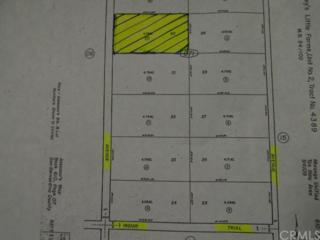 3471  Pearl Spring Avenue  , 29 Palms, CA 92277 (#DC15041213) :: Allison James Estates and Homes