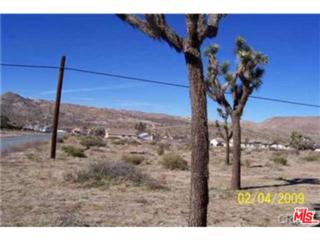 2  Acres-29 Palms Outer Highway  , Yucca Valley, CA 92284 (#15879301PS) :: Doherty Real Estate Group