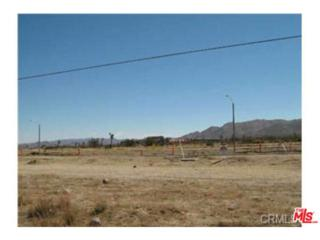 0  29 PALMS Highway  , Yucca Valley, CA 92284 (#15879299PS) :: Doherty Real Estate Group