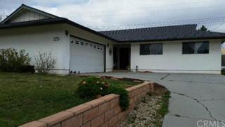 1013 W Hoffer Street  , Banning, CA 92220 (#EV15042740) :: Mainstreet Realtors®