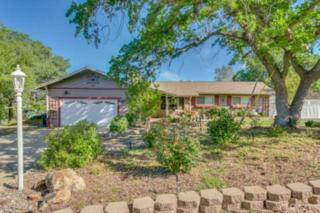 19  Sunset View Lane  , Oroville, CA 95966 (#CH15058923) :: Cory Meyer Home Selling Team