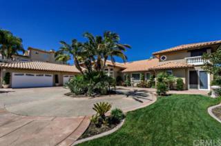 37895  Sky High Drive  , Murrieta, CA 92562 (#SW15059870) :: Allison James Estates and Homes