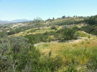 0  Via Estado  , Temecula, CA 87031 (#CV15095112) :: Allison James Estates and Homes
