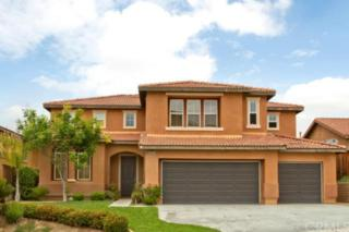 38705  Clearbrook Drive  , Murrieta, CA 92563 (#SW15097064) :: Allison James Estates and Homes