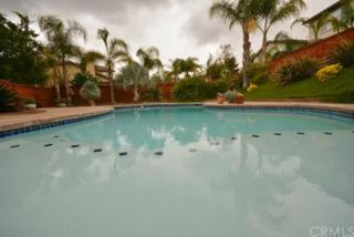 32530  Lama Court  , Temecula, CA 92592 (#SW15099777) :: Pacific Lifestyles Realty