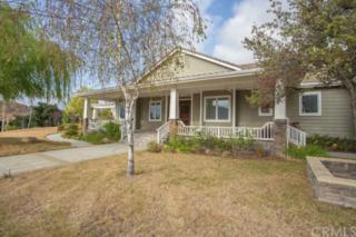 19350  Via Diana  , Murrieta, CA 92562 (#SW15106786) :: Allison James Estates and Homes