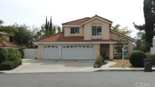 36291  Grimaud Court  , Murrieta, CA 92562 (#SW15108331) :: Allison James Estates and Homes