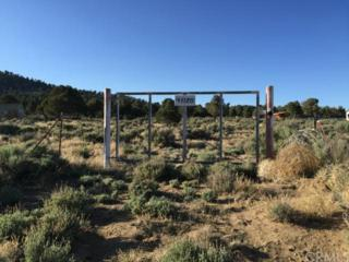 47126  Lakeview Road  , Big Bear, CA 92314 (#EV15111816) :: The Brad Korb Real Estate Group