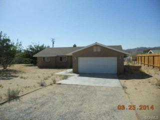 61880  Valley View Circle  , Joshua Tree, CA 92252 (#DW14137904) :: Allison James Estates and Homes