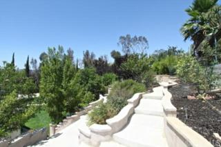 29821  Camino Del Sol Drive  , Temecula, CA 92592 (#SW14196714) :: Allison James Estates and Homes