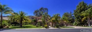 38381  Shoal Creek Drive  , Murrieta, CA 92562 (#SW15056564) :: Allison James Estates and Homes