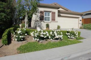 41463  Temeku Drive  , Temecula, CA 92591 (#SW15068207) :: Allison James Estates and Homes