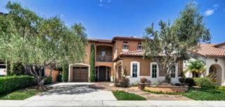 19  Douglass Drive  , Coto De Caza, CA 92679 (#OC14176775) :: Doherty Real Estate Group