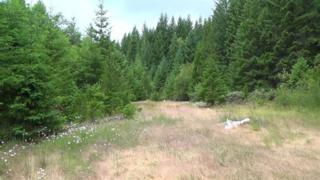 0  Jump Off Joe Creek Rd  5000, Grants Pass, OR 97526 (#2952379) :: The John Sellers Group