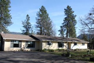 553  Soldier Creek Rd  , Grants Pass, OR 97526 (#2953439) :: The John Sellers Group