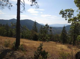 3200  Granite Hill Rd  , Grants Pass, OR 97526 (#2950387) :: The John Sellers Group