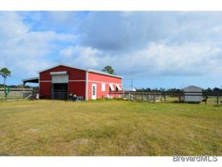 Address Not Published  , Malabar, FL 32950 (MLS #711737) :: Prudential Star Real Estate