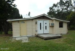 2631 NE First Avenue  , Palm Bay, FL 32905 (MLS #716459) :: Prudential Star Real Estate