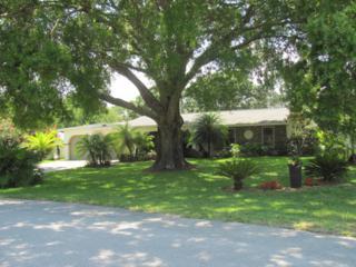 613 NE Brisbane Street  , Palm Bay, FL 32907 (MLS #725939) :: Prudential Star Real Estate