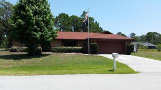 1501 SE Tugwell Street  , Palm Bay, FL 32909 (MLS #725955) :: Prudential Star Real Estate