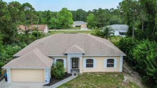 737 SW Tarr Avenue  , Palm Bay, FL 32908 (MLS #725957) :: Prudential Star Real Estate