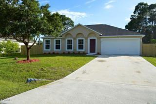 1816 SE Warton Avenue  , Palm Bay, FL 32909 (MLS #725958) :: Prudential Star Real Estate