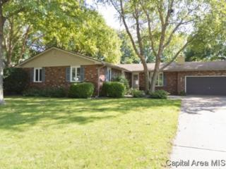 69  Axline Rd  , Chatham, IL 62629 (MLS #145107) :: Killebrew & Co Real Estate Team