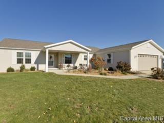 2800  Via Rosso St 100  , Springfield, IL 62703 (MLS #146110) :: Killebrew & Co Real Estate Team