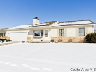 113  Davinci  , Springfield, IL 62703 (MLS #150872) :: Killebrew & Co Real Estate Team