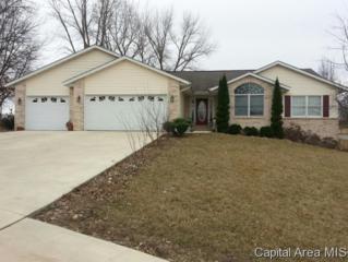 1980  Mcqueen Road  , Pleasant Plains, IL 62677 (MLS #151479) :: Killebrew & Co Real Estate Team