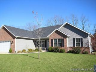 1620  Hoechester Rd  , Springfield, IL 62712 (MLS #145892) :: Killebrew & Co Real Estate Team