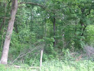 0  County Road  , Wheatland, MO 65779 (MLS #60007759) :: Good Life Realty of Missouri